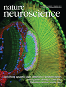 Parvalbumin-positive hippocamapl interneurons are required for spatial working but not reference memory