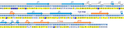 Sequence-specific assignment and secondary structure of the extracellular domain of GLIC