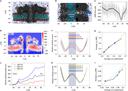 Electrical recognition of the twenty proteinogenic amino acids using an aerolysin nanopore