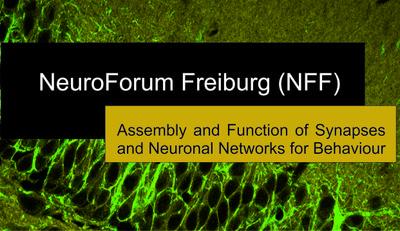 NFF logo