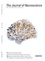 Interneurons Provide Circuit-Specific Depolarization and Hyperpolarization