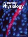 eNOS determines modulation of RBF autoregulation