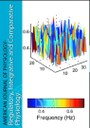 Dynamics of endothelium-dependent vasodilation